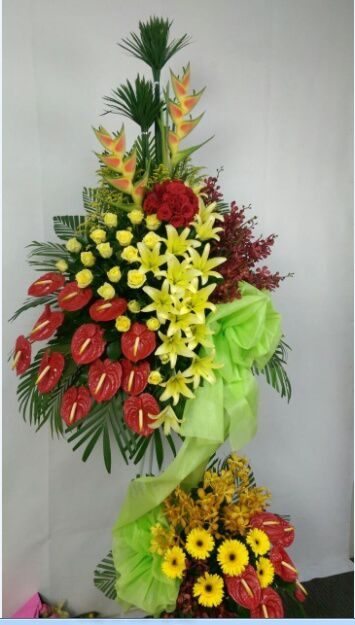 Lang hoa mung khanh thanh loc ve