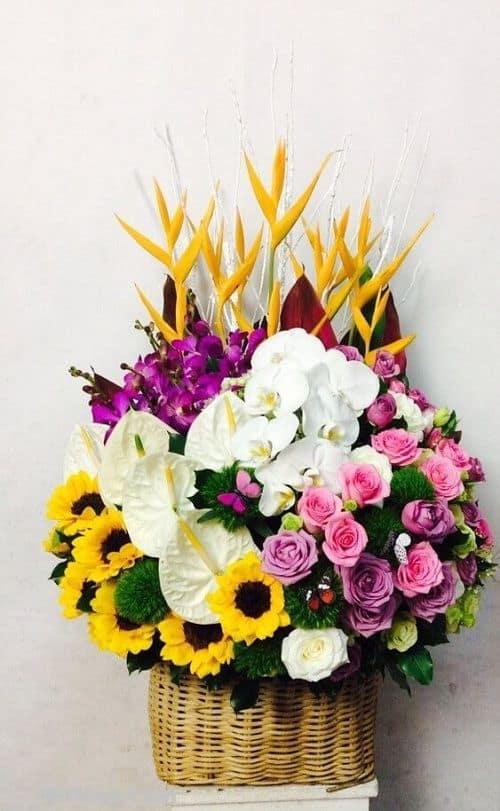 Cua hang hoa tuoi huyen nha be