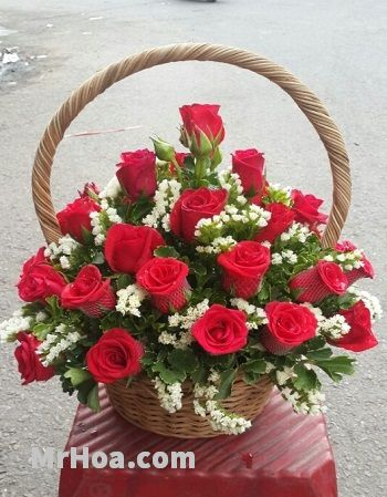 Cua hang hoa tuoi phu nhuan