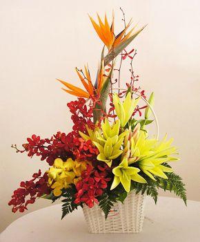 hoa dep tang sinh nhat