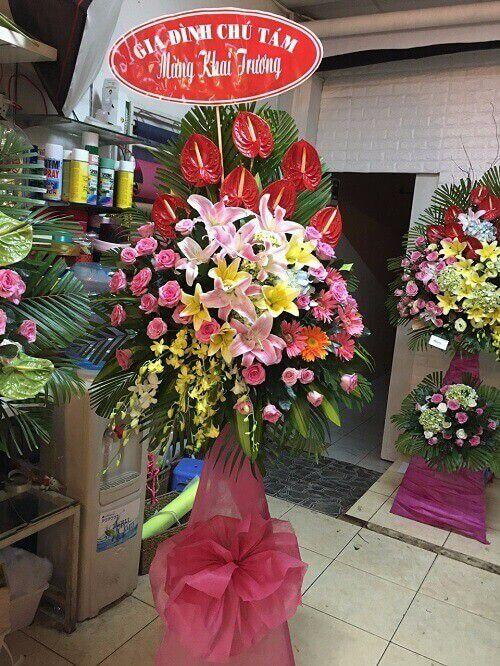 Hoa quan 10 chuc mung khai truong