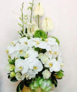 Hoa sinh nhật cao cấp