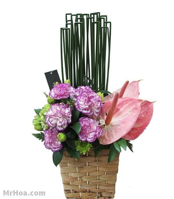 Hoa sinh nhật Tân Phú