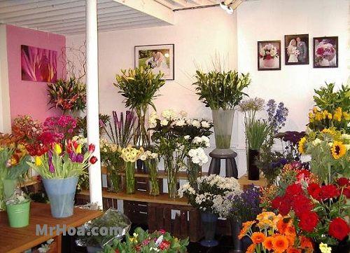 Shop hoa tươi Củ Chi