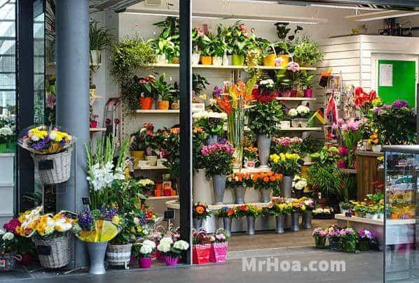 Shop hoa tươi huyện Hóc Môn