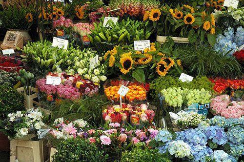 Shop hoa tươi ở quận 11