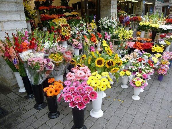 Shop hoa tuoi Thu Duc