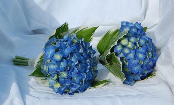 Hoa cẩm tú cầu đẹp làm hoa cưới