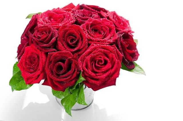 hoa hong do cam binh thuy tinh