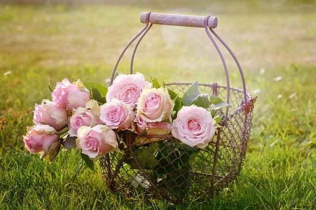 gio hoa hong dep nhat