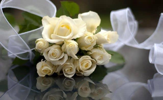 bó hoa hồng bạch cho vợ