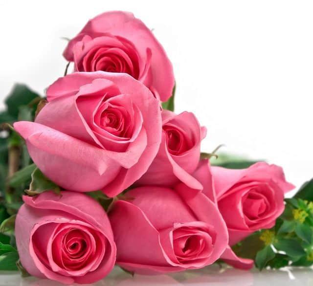 Bí quyết tặng hoa cho người yêu