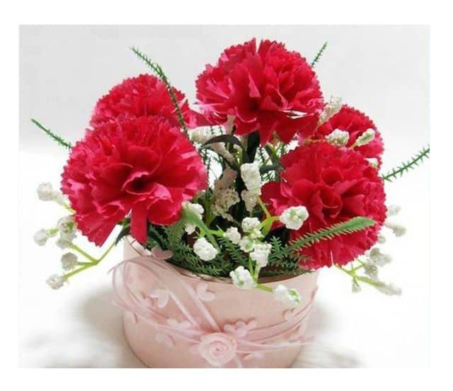 Bó hoa đẹp nhất