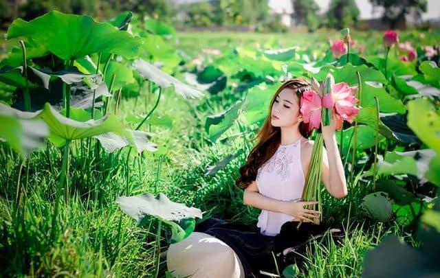 thiếu nữ trộm hoa sen