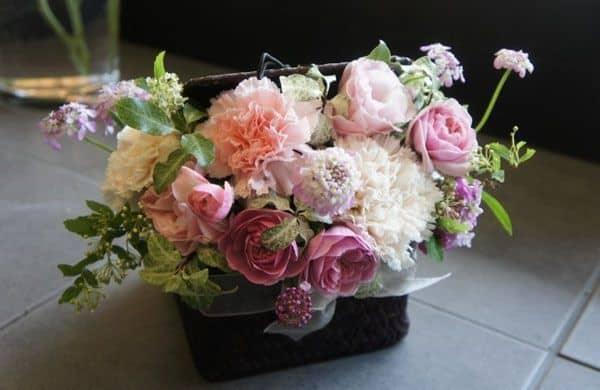 Hoa cẩm chướng tặng mẹ 20-10