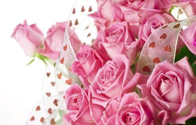 Hoa đẹp 20-10 hoa hồng