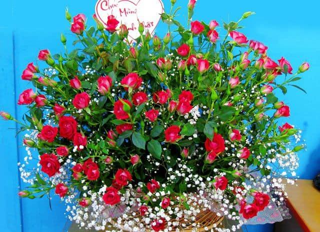 Gio hoa đẹp