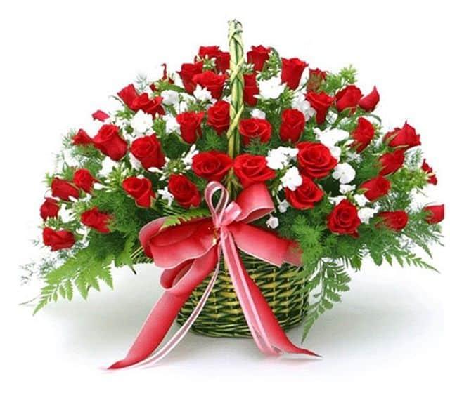 Giỏ hoa hồng đỏ tặng sinh nhật