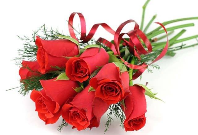 7 bông hồng