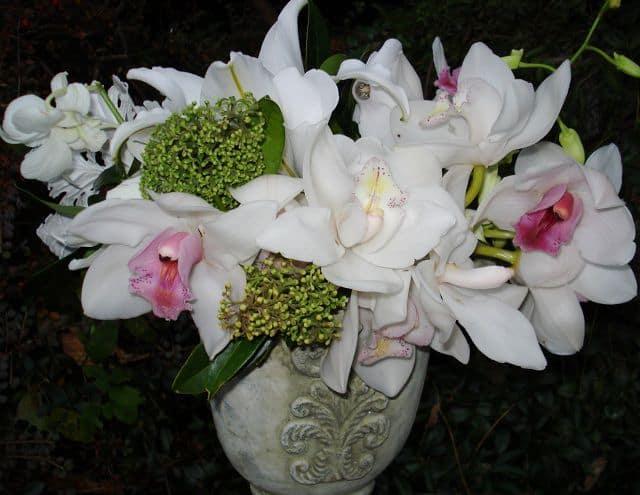 Bó hoa lan đẹp