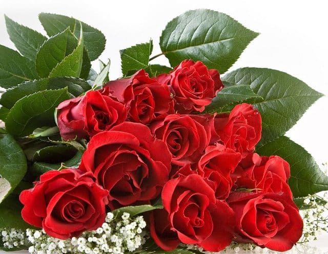 Shop hoa tươi quận Tân Bình chuyên bán các loại hoa tươi - 1