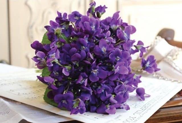 Bó hoa lan màu tím