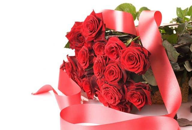 Hoa hồng sinh nhật người yêu
