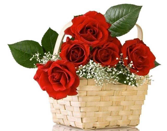 giỏ hoa sinh nhật đẹp nhất thế giới