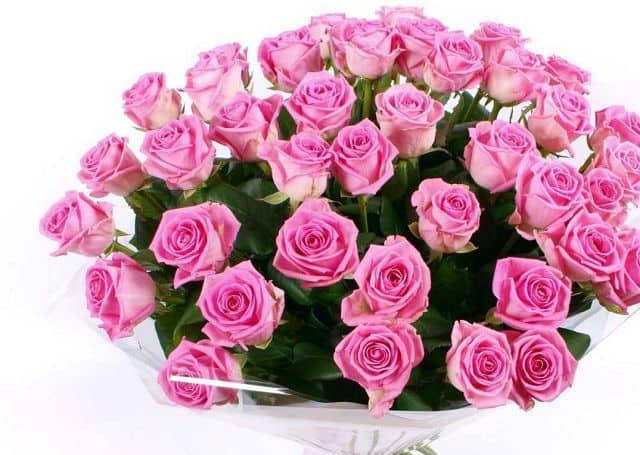 Shop hoa tươi quận Tân Bình chuyên bán các loại hoa tươi