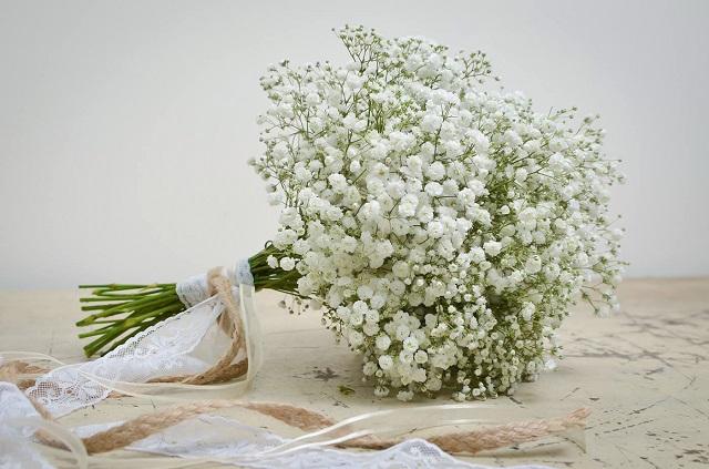 bo hoa bi cam tay co dau