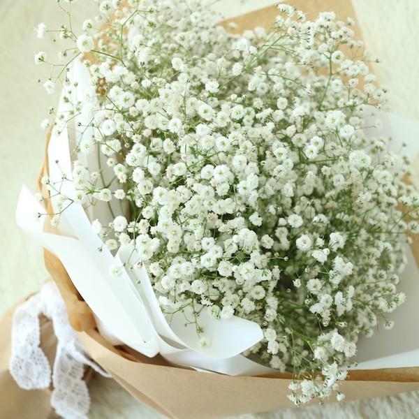 bo hoa bi mau trang