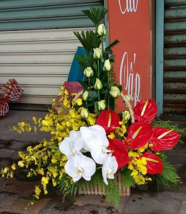 Cua hang hoa tuoi nhon trach