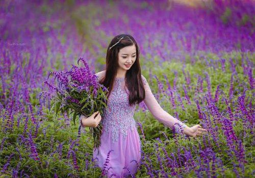 hinh anh dep va y nghia hoa oai huong 18