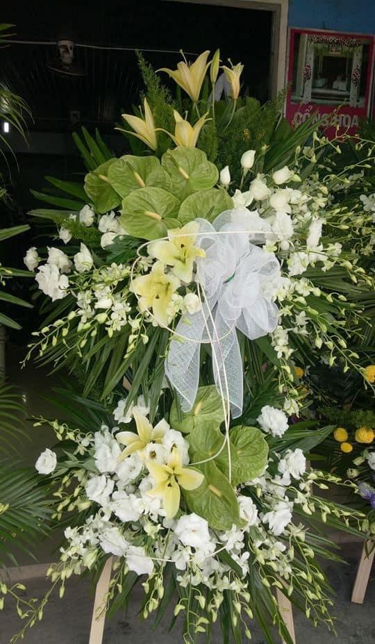 Hoa dam tang tan thanh