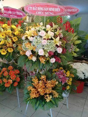 Hoa tuoi chau thanh Tay Ninh