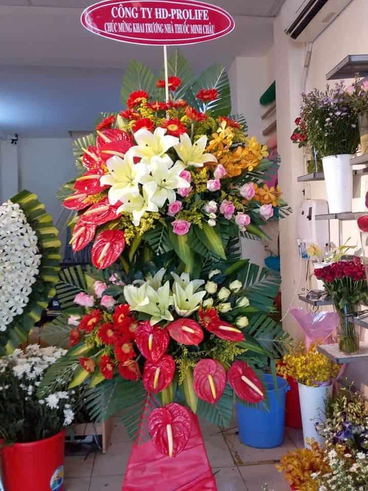 Shop hoa tuoi Ben Cau Tay Ninh