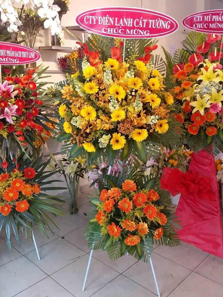 Shop hoa tuoi Chau Thanh Tay Ninh