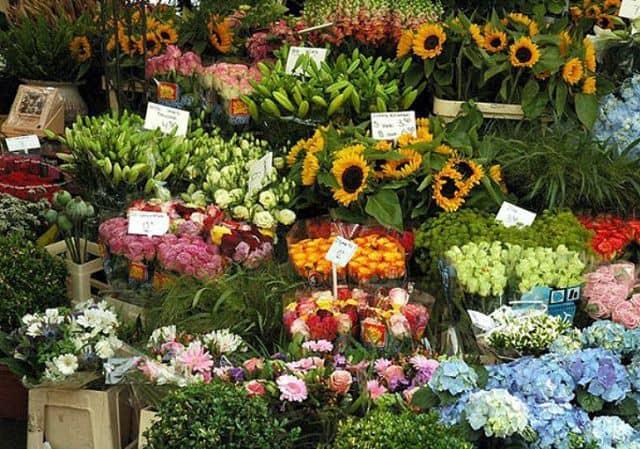 Shop hoa tươi hồ thị kỷ quận 10 tp.hcm