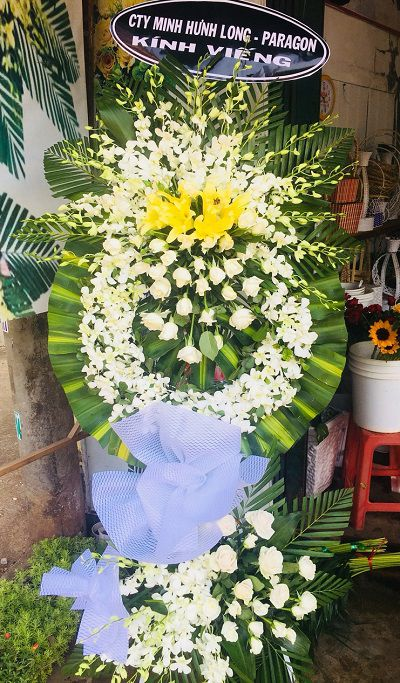 Shop hoa tuoi quang phu cumaga dac lac