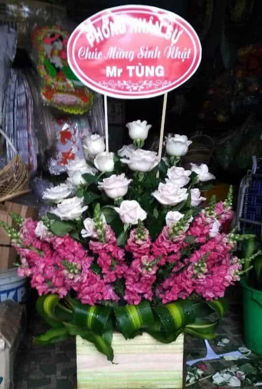 Hoa sinh nhat tai go cong