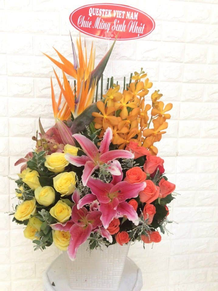 Gio hoa sinh nhat tinh oi