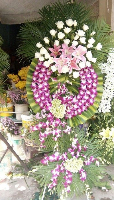 hoa tang le binh dai ben tre