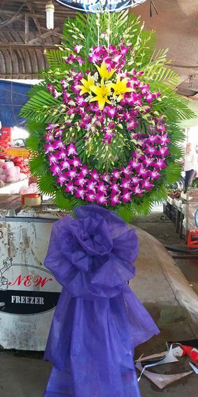 hoa tang le bac lieu