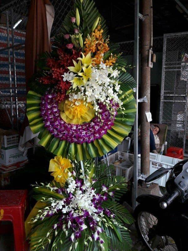 Hoa tang le tai dong xoai