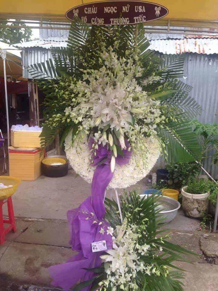 hoa tang le kien luong