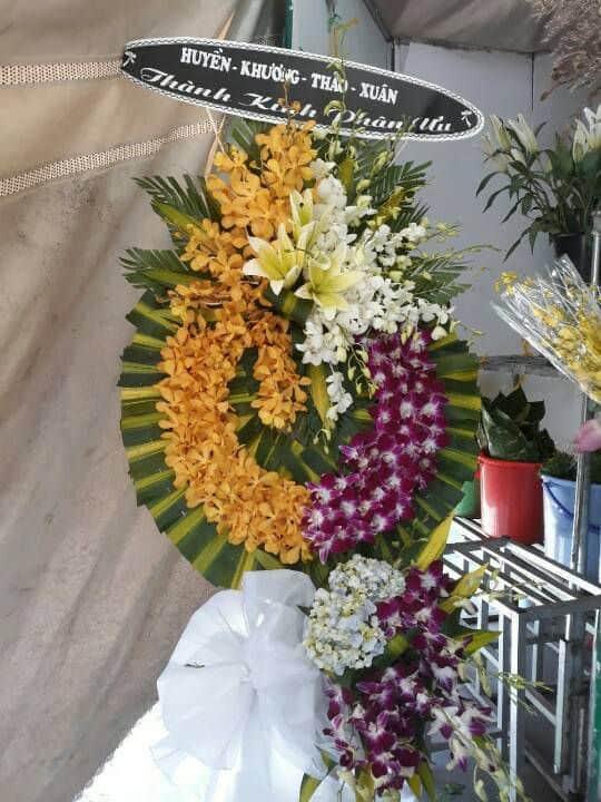 Hoa tang le Phan Thiet
