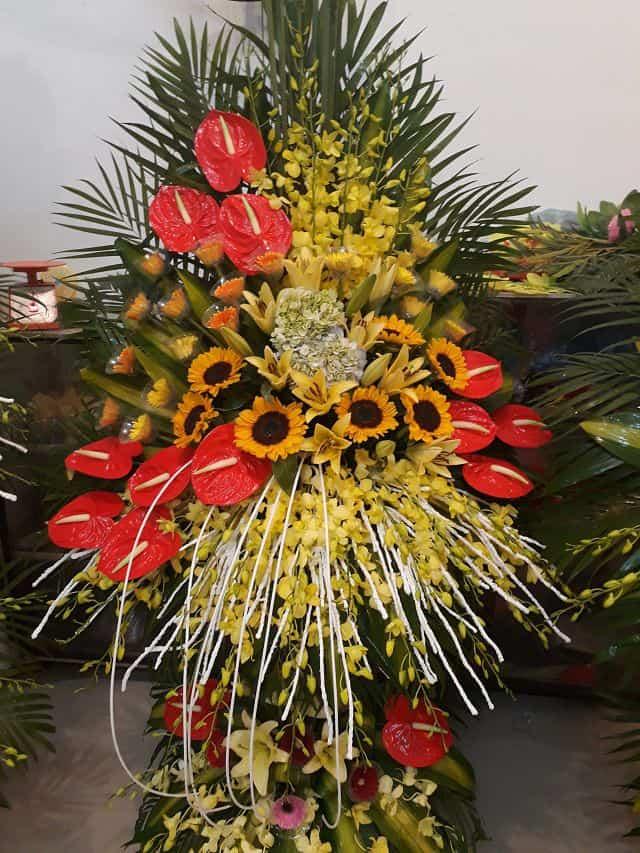 hoa trieu son thanh hoa
