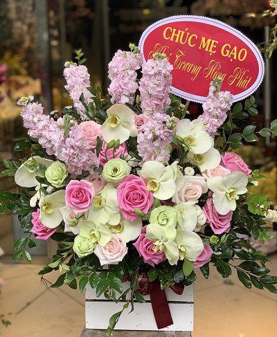 hoa tuoi binh dai ben tre