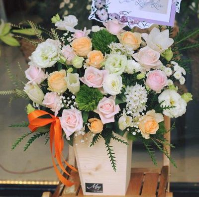 hoa lang chau thanh tra vinh