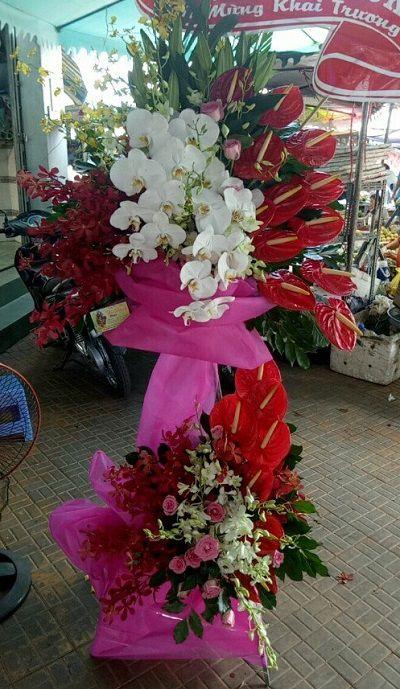 hoa tuoi cho lach